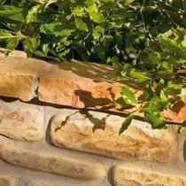 Image for Bradstone Natural Sandstone Edging Modac