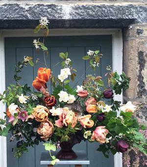Kollektion Tulpen Victorian