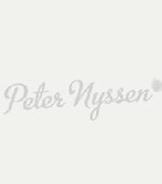 Hyacinth City of Bradford