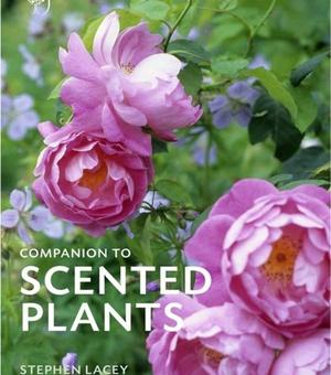 RHS Companion to Scented Plants