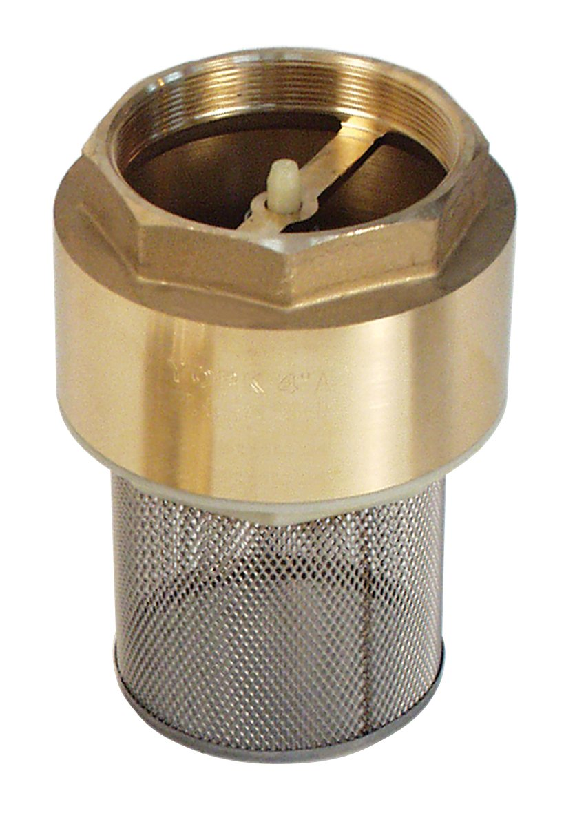 Brass spring check valve with strainer t pumps