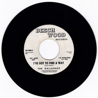 Gallahads - I've Got To Find A Way / Once I Had A Love - Beech Wood 5000 DJ