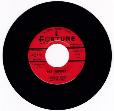 Doctor Ross - Cat Squirrel / The Sunnyland - Fortune 857