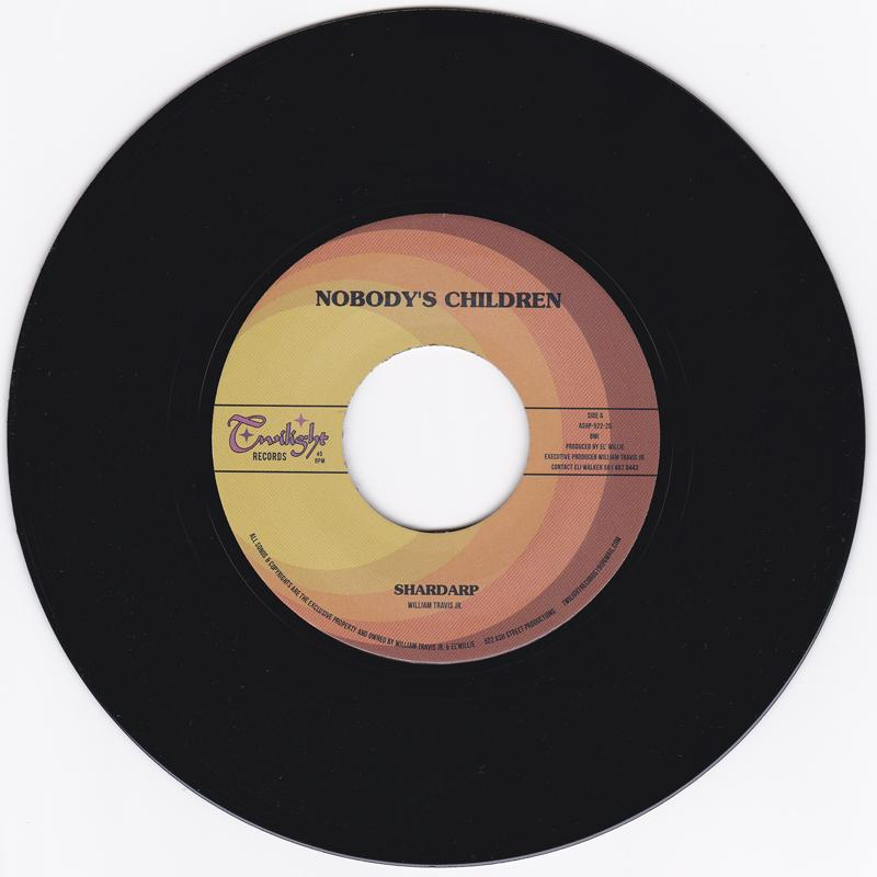 NOBODYS CHILDREN - SHARDARP / WISH I HAD A GIRL - TWILIGHT 522 20