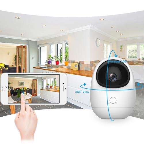 Clever Dog WiFi Remote Viewer PTZ Camera with Call Button